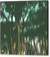 The Woods Acrylic Print