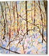 The Woods With Snow Acrylic Print