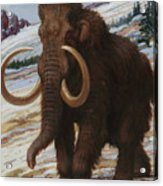 The Woolly Mammoth Is A Close Relative Acrylic Print by Charles R. Knight