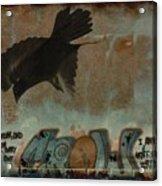 The Word Crow Acrylic Print