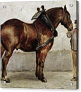 The Work Horse Acrylic Print by Otto Bache
