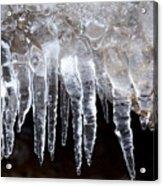 The World Of Ice Acrylic Print