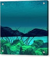 The Wreck Diving The Reef Series Acrylic Print
