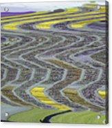 The Yellow Brick Road Acrylic Print