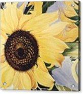 The Yellow  Acrylic Print