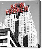 The Yorker Acrylic Print