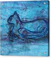Theodore Acrylic Print