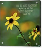 There Is Only One Today Acrylic Print