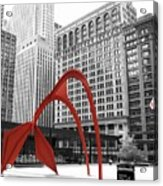 There's A Red Flamingo In Chicago Acrylic Print