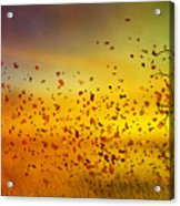 They Call Me Fall Acrylic Print by Mary Hood