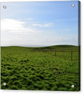 Thick Grass Field Abutting The Cliff's Of Moher In Ireland Acrylic Print