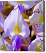 Thinking Of You Wisteria Acrylic Print