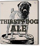 Thirsty Dog Ale Acrylic Print