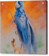 This Bird Had Flown Acrylic Print
