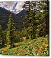 This Is Washington State No.1 - Klipchuck Acrylic Print by Paul W Sharpe Aka Wizard of Wonders