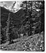 This Is Washington State No.1b - Klipchuck Acrylic Print by Paul W Sharpe Aka Wizard of Wonders