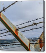 This Side Of The Fence Acrylic Print