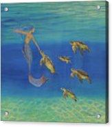 Swim This Way Acrylic Print
