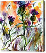 Thistles And Bees Watercolor And Ink Acrylic Print