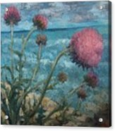 Thistles By The Sea Acrylic Print