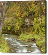 Thompson Creek Autumn 1 B Acrylic Print