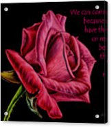 Thorns Have Roses  Acrylic Print