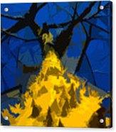 Thorny Tree Blue Sky Acrylic Print