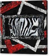Those Eyes...zebra Acrylic Print