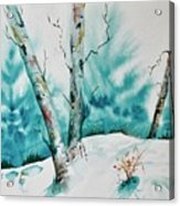 Three Aspens On A Snowy Slope Acrylic Print
