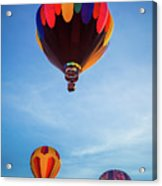 Three Balloons Acrylic Print