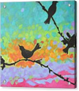 Three Birds Acrylic Print