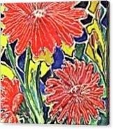 Three Red Blooms Acrylic Print
