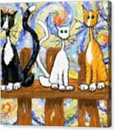 Three Cats On A Fence Acrylic Print