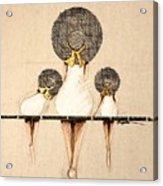 Three Ladies On A Dock  Acrylic Print