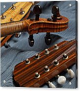 Three Musical Instrument Heads On Blue Acrylic Print
