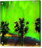 Three Palms IIi Acrylic Print