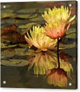 Three Perfect Lilies Acrylic Print