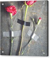 Three Red Flowers Taped To Wooden Background Acrylic Print
