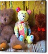 Three Special Bears Acrylic Print