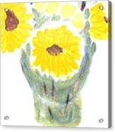 Three Sunflowers Acrylic Print