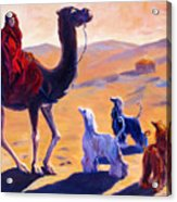 Three Wise Men Acrylic Print by Terry  Chacon
