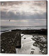 Throne Of Seagulls Acrylic Print