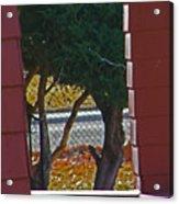 Through My Neighbors Porch Acrylic Print