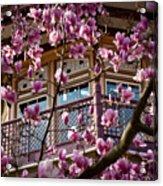 Through The Flowers Acrylic Print