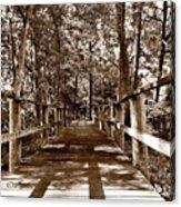 Through The Narrow Path  Acrylic Print