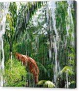 Through The Waterfall Acrylic Print