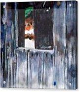 Thru the Barn Window Acrylic Print