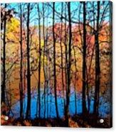 Thru Trees Acrylic Print