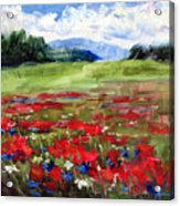 Thunder Clouds Over Bavarian Meadow Acrylic Print