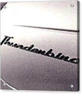 Thunderbird Acrylic Print